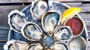 Image principale de l'article Les 5 meilleurs restos où manger des huîtres à 1$
