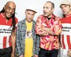 La formation française de punk alternatif Ludwig von 88, qui a repris du service, n'a pas joué à Québec depuis 1993. Elle va lancer un nouvel album de 20 chansons cet automne.