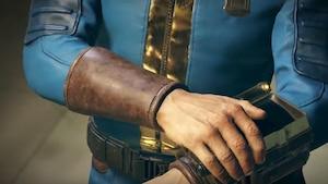 Fallout 76 pourrait être un survival comme Rust
