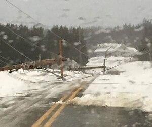 Tout Percé est privé d'électricité depuis que de forts vents ont fait tombé des poteaux électriques le long de la route 132 à l'entrée de la ville.