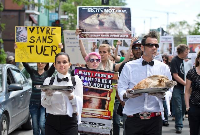 Plusieurs personnes se sont rendues au centre-ville de Montréal pour participer à la Marche pour la fermeture des abattoirs, samedi après-midi.