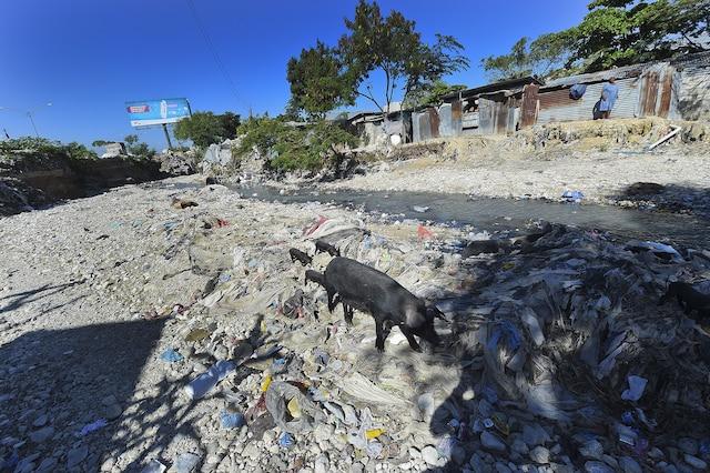 Des milliers d'Haïtiens ont troqué leur tente pour des habitations rudimentaires dans des bidonvilles et vivent toujours dans des conditions misérables. Dans les derniers camps, la vie n'est pas rose.