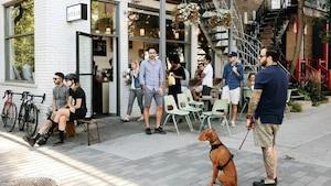 Image principale de l'article Dans quel quartier de Montréal devriez-vous vivre?