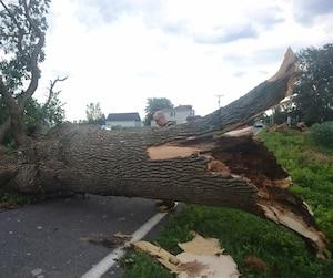 La météo a causé des dégâts sur le rang St-Thomas dans la municipalité de St-Polycarpe, en Montérégie.
