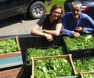 À l'été 2014, Sandrine Contant-Joannin et son père Roland ont ramassé, depuis une vingtaine de producteurs, 24 tonnes de légumes et fruits rejetés par les supermarchés. Cette année, ils projettent de ramasser 36 tonnes de dons.