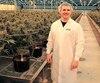 Sébastien St-Louis, PDG d'Hydropothecary, ici dans sa serre de Gatineau, se dit fier de devenir le «producteur privilégié» de la SAQ.