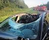 Le billot de bois est entré à l'intérieur du véhicule, où prenaient place trois personnes, par la vitre avant. Il a basculé et estressorti par le toit, arraché au passage.