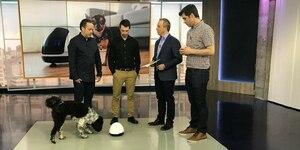 Un robot pour s'occuper de votre animal!