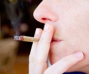 Bloc pot cannabis joint