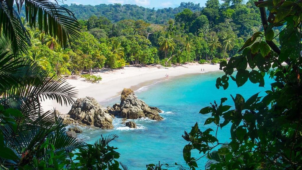 «Pura vida» au Costa Rica!