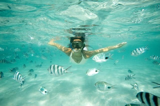 Situé sur une réserve naturelle protégée, près de la deuxième plus grande barrière de corail au monde, le Club Med Cancún Yucatan offre un site de plongée exceptionnel.