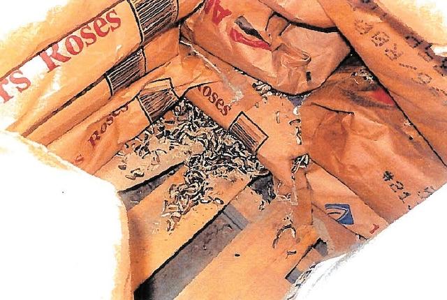 Dans un entrepôt de la partie arrière du commerce, les inspectrices ont noté la présence généralisée d'excréments de souris sur des palettes où étaient entreposées des denrées.
