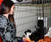 La Ville doit soutenir davantage la SPCA Saguenay sur le plan financier, selon la directrice générale de l'organisme, Marypier Hudon-Thériault.