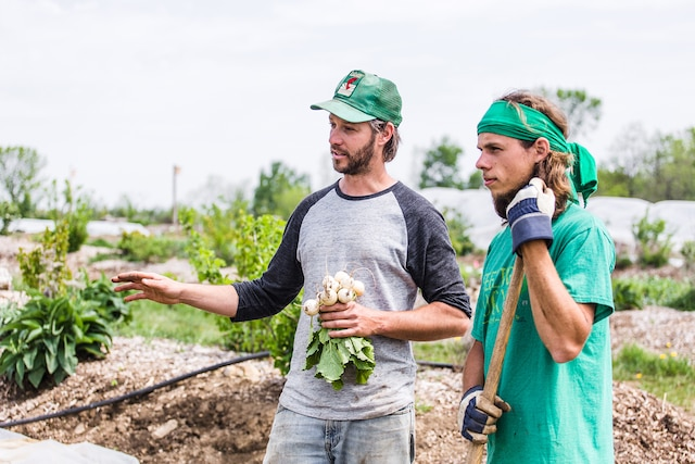 Jean-Martin Fortier, ici avec un de ses employés stagiaires, travaille discrètement depuis un an dans le but d'écrire une nouvelle page de l'histoire agricole au Québec.