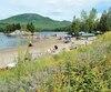 La plage du lac Stukely, avec la barrière végétale empêchant les bernaches de circuler librement et de contaminer le site et l'eau.