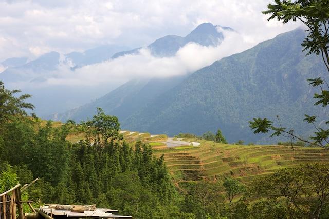 Les rizières en terrasse, Sapa.