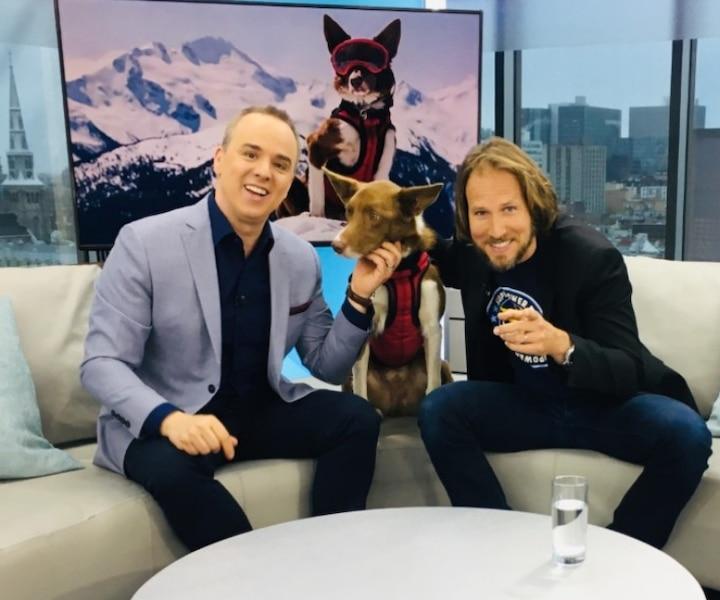 Henry, le super chien sauveteur en montagne!