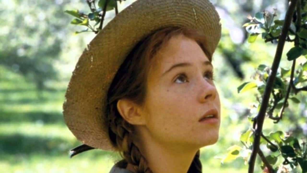 Sondage quelle est la meilleure adaptation de ces livres for Anne la maison aux pignons verts livre en ligne