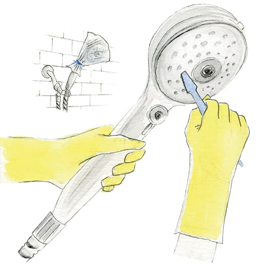 how-to-clean-your-showerhead.jpg