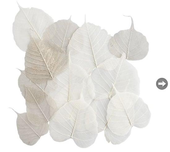 thanksgiving-decor-leaves.jpg