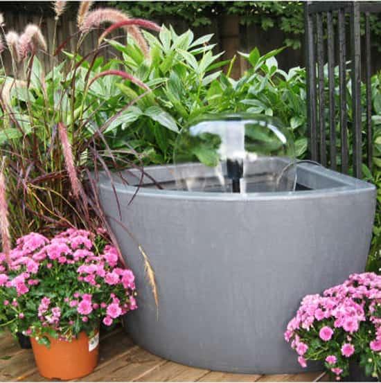 garden-musts-fountain.jpg