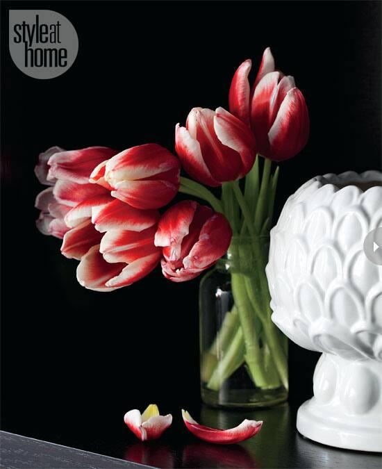 townhouse-tulips.jpg