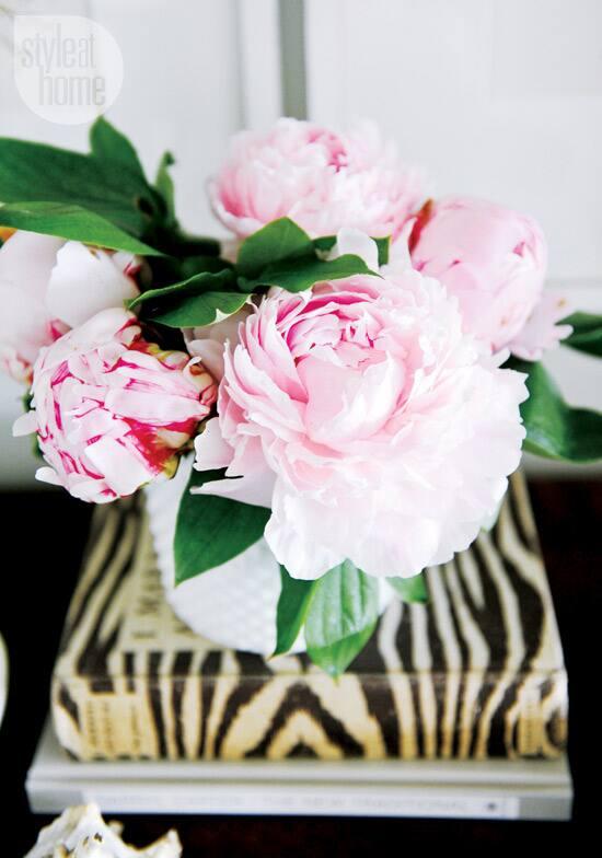 interior-somethingsgotta-floral.jpg