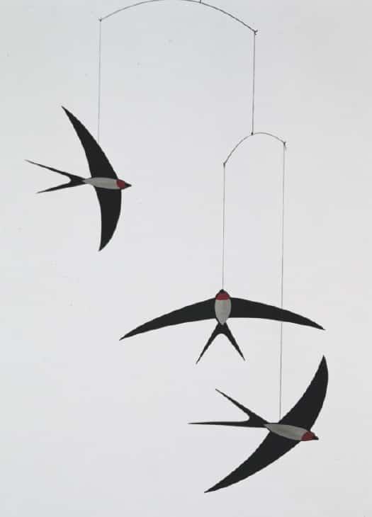 f-swallows