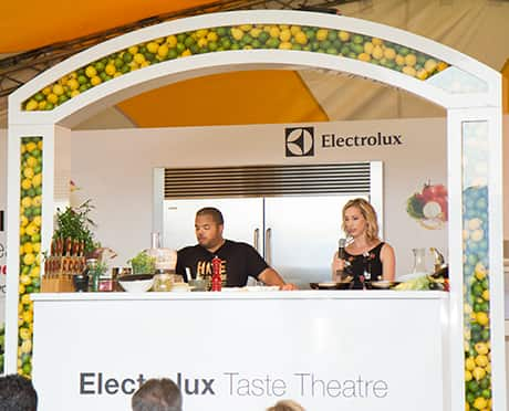electrolux-taste-theatre