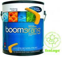 boomerangcan