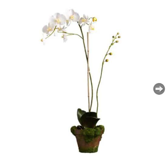 fauxflowers-white.jpg