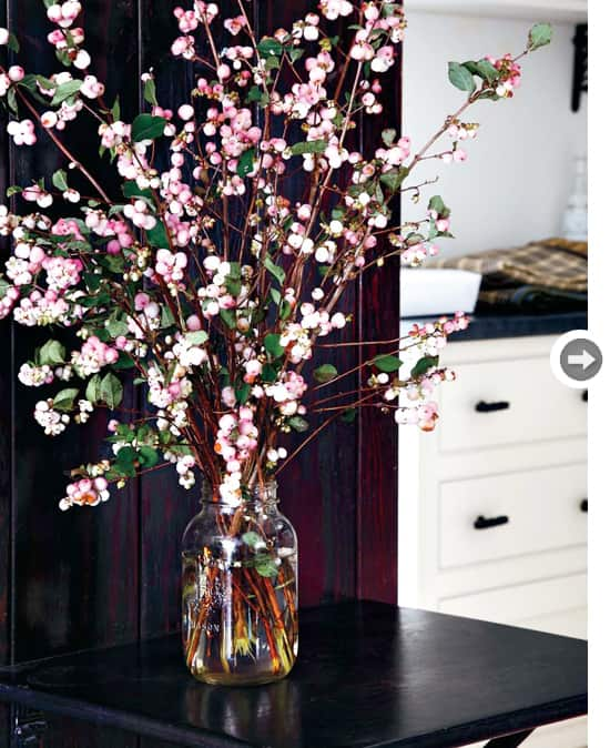 florals-berry-branches.jpg
