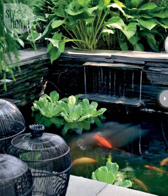 backyard-makeover-pond.jpg