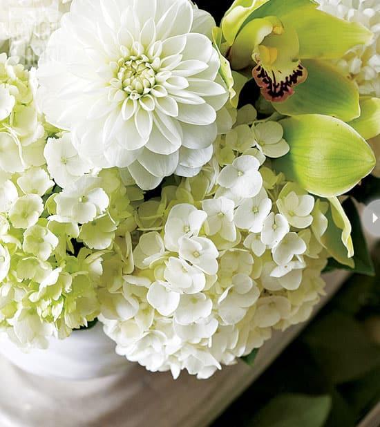 classic-elegance-floral.jpg