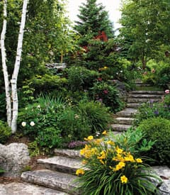 gardenofdreams-stairs.jpg