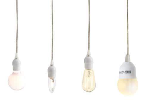BLIGHT-Bulb2bis.jpg