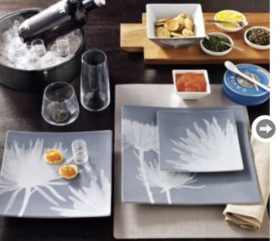 grey-decor-xray-dinnerware.jpg