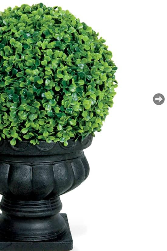 christine-outdoor-room-topiary.jpg