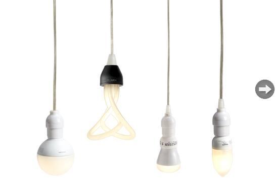 BLIGHT-bulb1.jpg