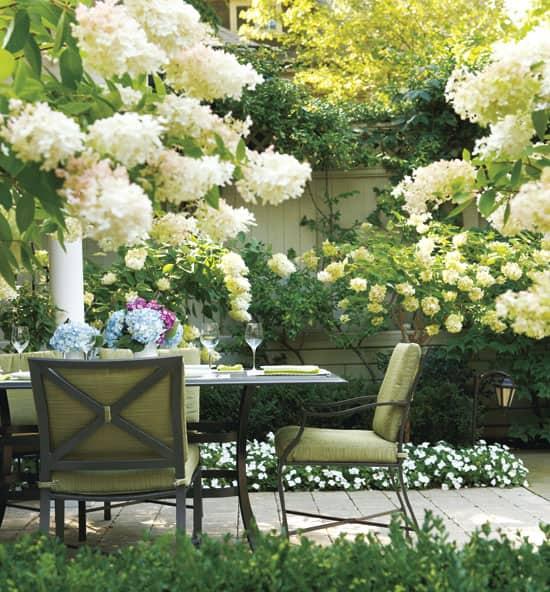 outdoor-living-room-hydrangea.jpg