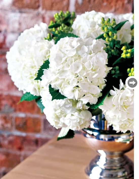 florals-white-hydrangeas.jpg
