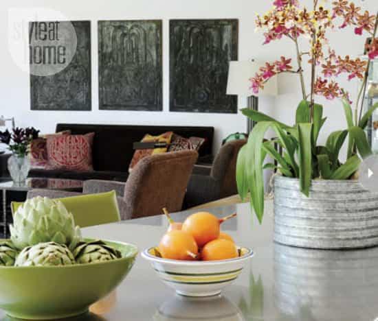 plant-decor-indoors-countertop.jpg
