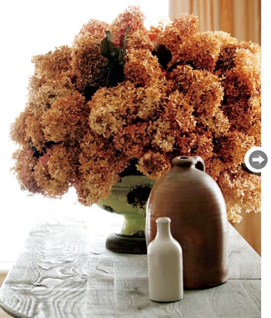 florals-dried-hydrangeas.jpg