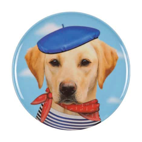 kids funny dog plate