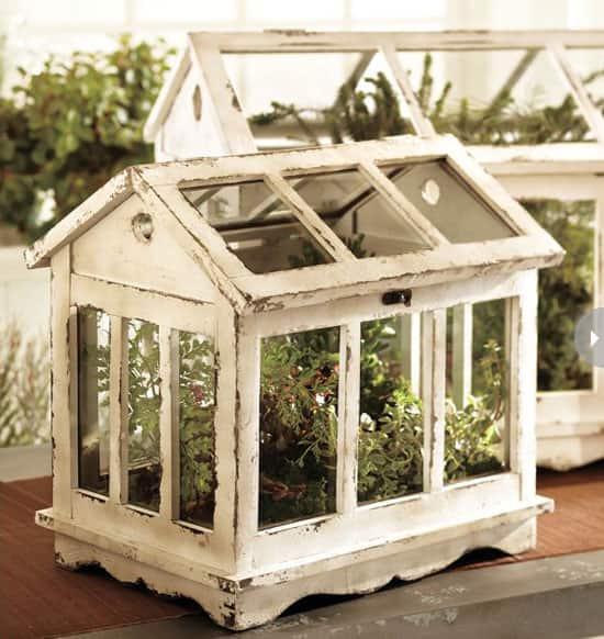 indoor-gardening-terrarium.jpg