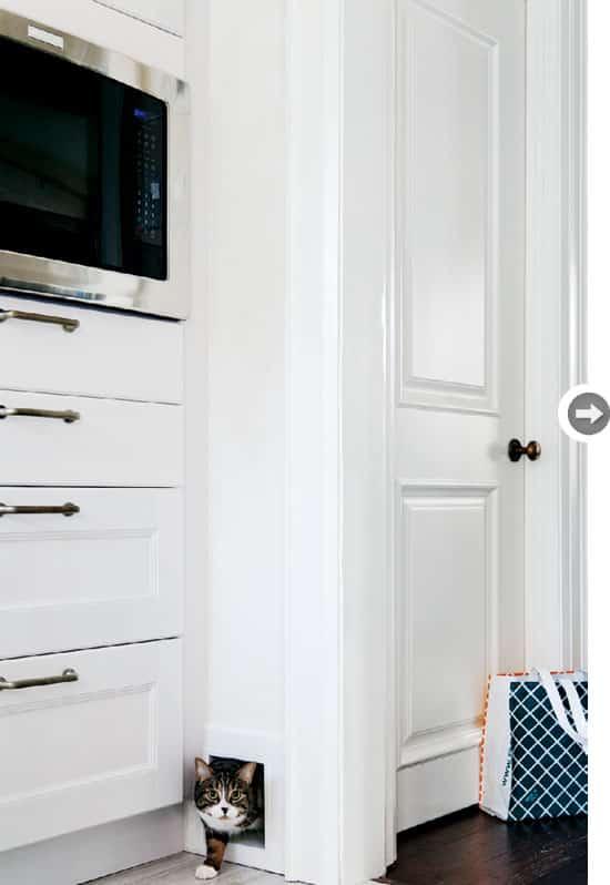kitchen-confidence-kittycorner.jpg