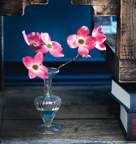 dark-florals-pink-dogwood.jpg