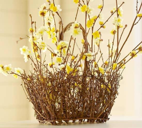 yellow-cherry-blossoms.jpg