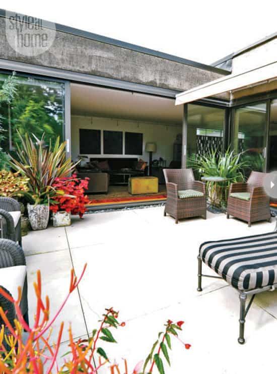 plant-decor-indoors-outdoor.jpg