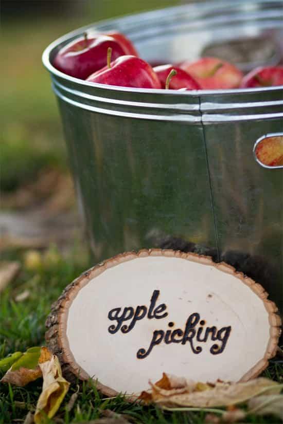 apple-bucket.jpg